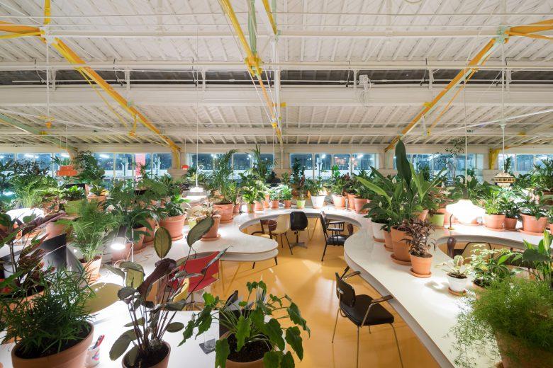 緑という癒しの鉢に囲まれたオフィス空間 海外オフィスデザインのまとめ オフィスデザイン・レイアウト Work Kit