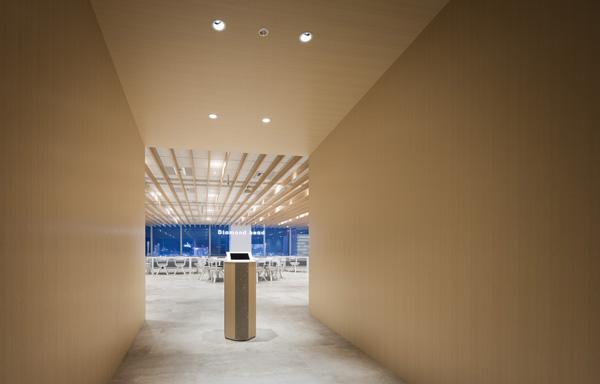 ダイアモンドヘッド株式会社  Sapporo Office